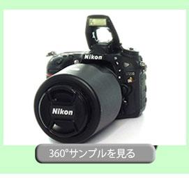 360-sampl-cam
