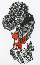 jke-fox-72