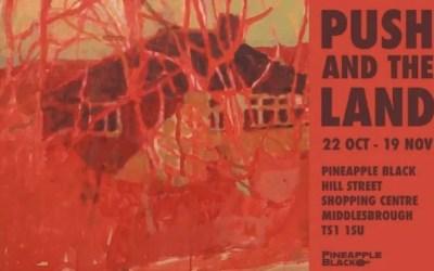 'Push and the Land' – Stuart Jones exhibits at Pineapple Black Arts