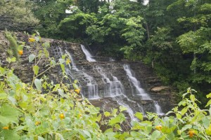 burrville-falls-cider-mill