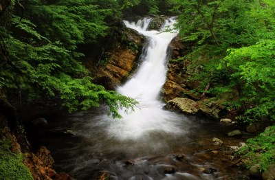 Millbrook-Falls