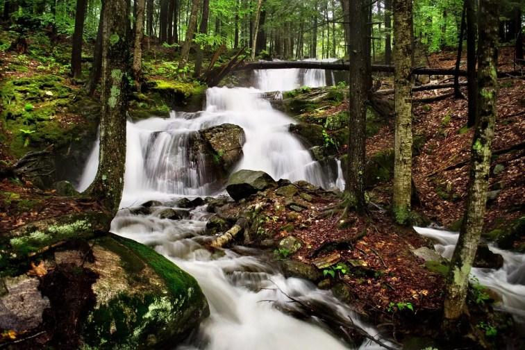 Falls Along River Road
