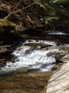 Bucks Brook, Falls on - Otselic