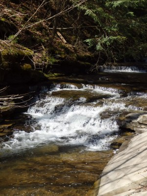 Bucks Brook, Falls on - Otselic