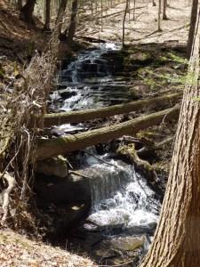 Waterfalls of Pharsalia
