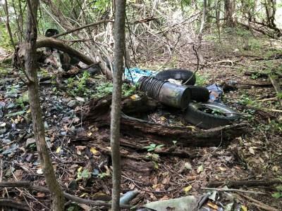 Poestenkill Gorge Garbage Cleanup Help Needed Volunteers