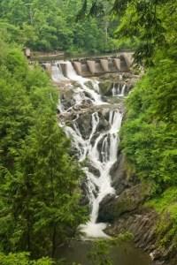 waterfall trees