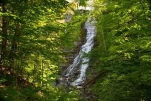 waterfalls, trees