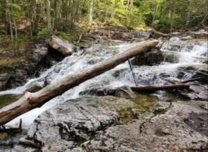 Waterfall, upper artists falls