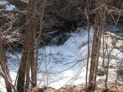 Florence Creek, Slater Road, Oneida County, New York 4-15-2009