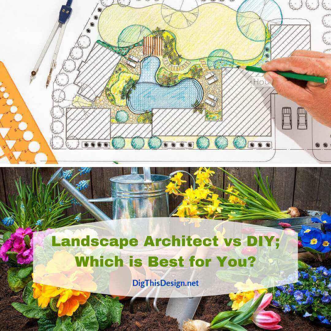 Landscape Architect vs DIY