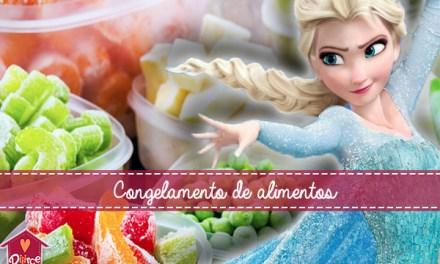 Congelamento de alimentos: cuidados que provavelmente nem a Elsa sabia