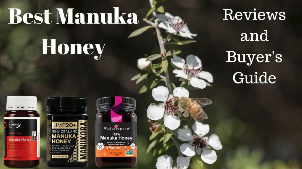 Best Manuka Honey - Reviews and Buyer's Guide