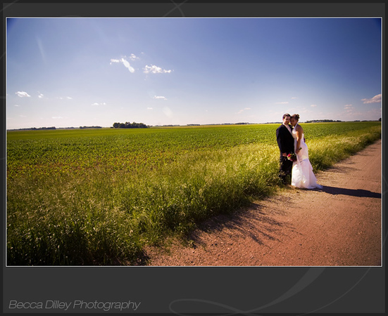 wedding portrait with field of corn