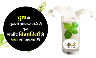 Importance of Tulsi milk