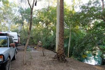 Adels Grove - Campsite (Qld)
