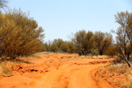 Road Into Lamberts Gravitational Centre Of Australia (NT)