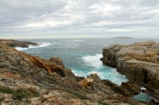 Whalers Way - Cape Carnot Blowhole and Baleen Rockpool (SA)