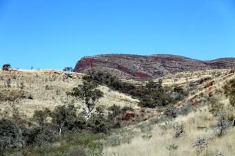 Newman To Mount Robinson (WA)