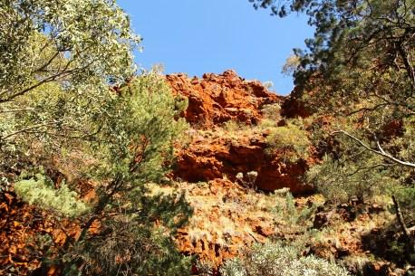 Mount Robinson - Gorge (WA)