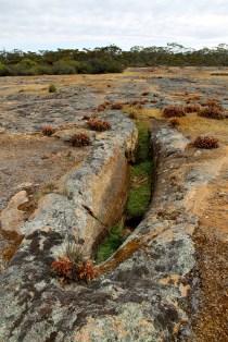 Deralinya Homestead - Gnamma Hole (WA)