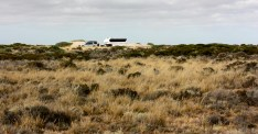 52 Peg Nullarbor Free Camp (SA)