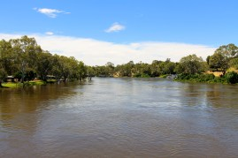 Murray River (SA)
