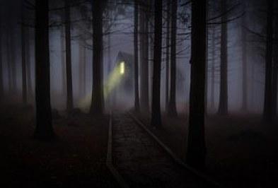 foggy-545838__180