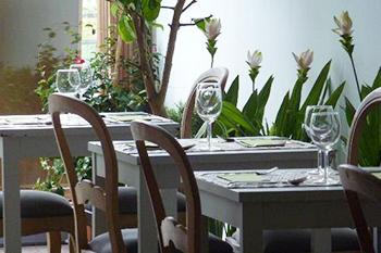 Andor Violeta Restaurante