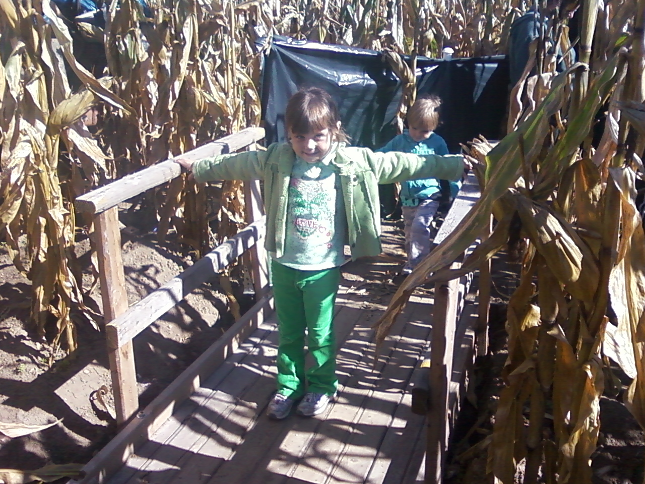 The Amazing Maze And Pumpkin Patch Toddler Tested And