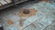 ремонт-на-плосък-покрив