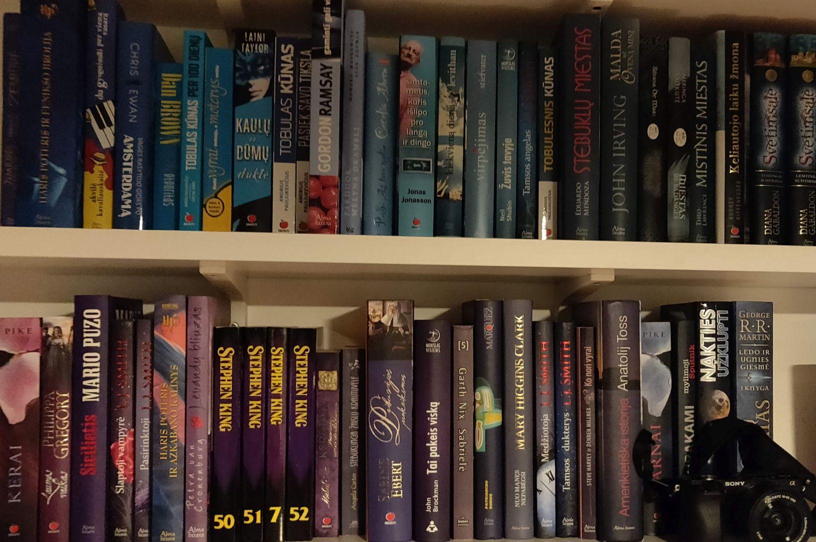 Mano pirmasis knygų katalogas ir knygos, kurias galiu rekomenduoti