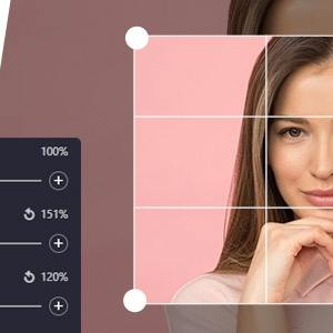 JUAL ProVision Image Editor for WordPress / WooCommerce with Folders File Manager