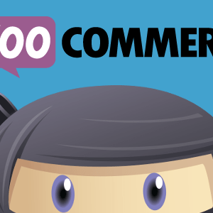 JUAL WP Adverts - Accept Payments Using WooCommerce Plugin