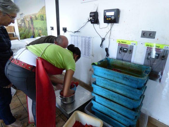 fabrica-de-pimientos-el-chato