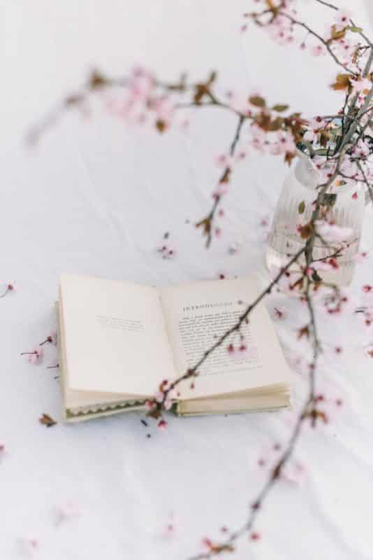 foto keren untuk profil whatsapp instagram telegram tiktok facebook line aestetik estetik buku dan bunga sakura di atas latar putih polos