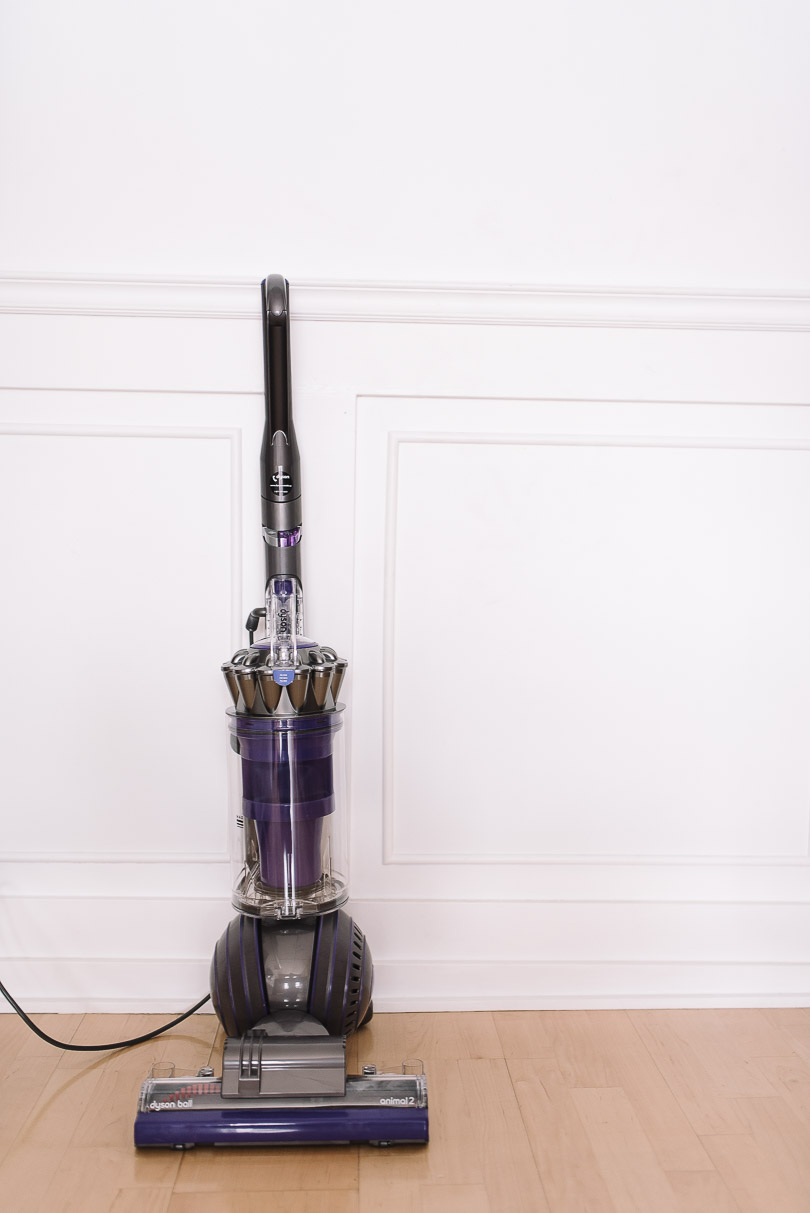 Front view of the Dyson Ball Animal 2