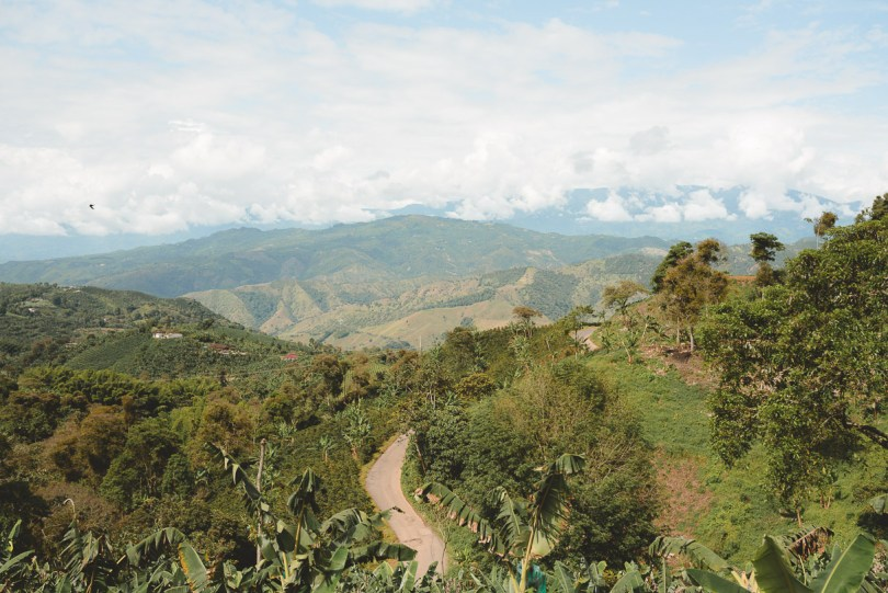 coffee sustainability colombia
