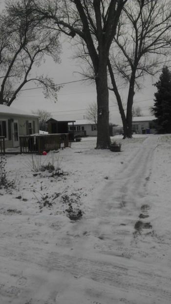 One stretch of sidewalk I have to shovel.