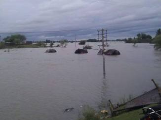Dinga City Flood Pictures