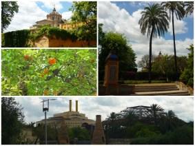 les jardins de la Cartuja