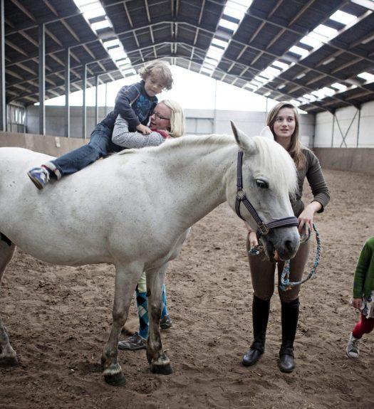 Paardemelkerij Filippus logeren bij de paarden