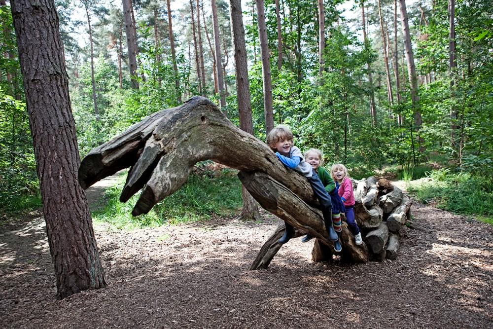 Everzwijnenbad speelbos Vlaams Brabant