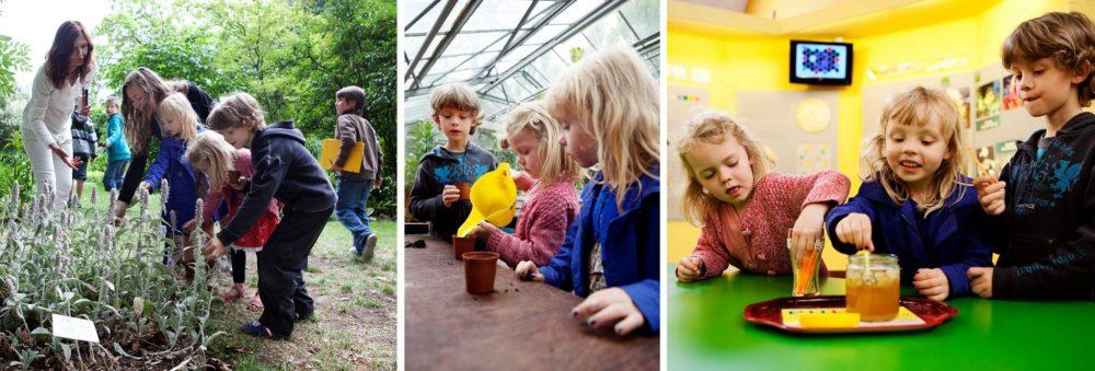 Gent met kinderen: Tuin van Kina Gent