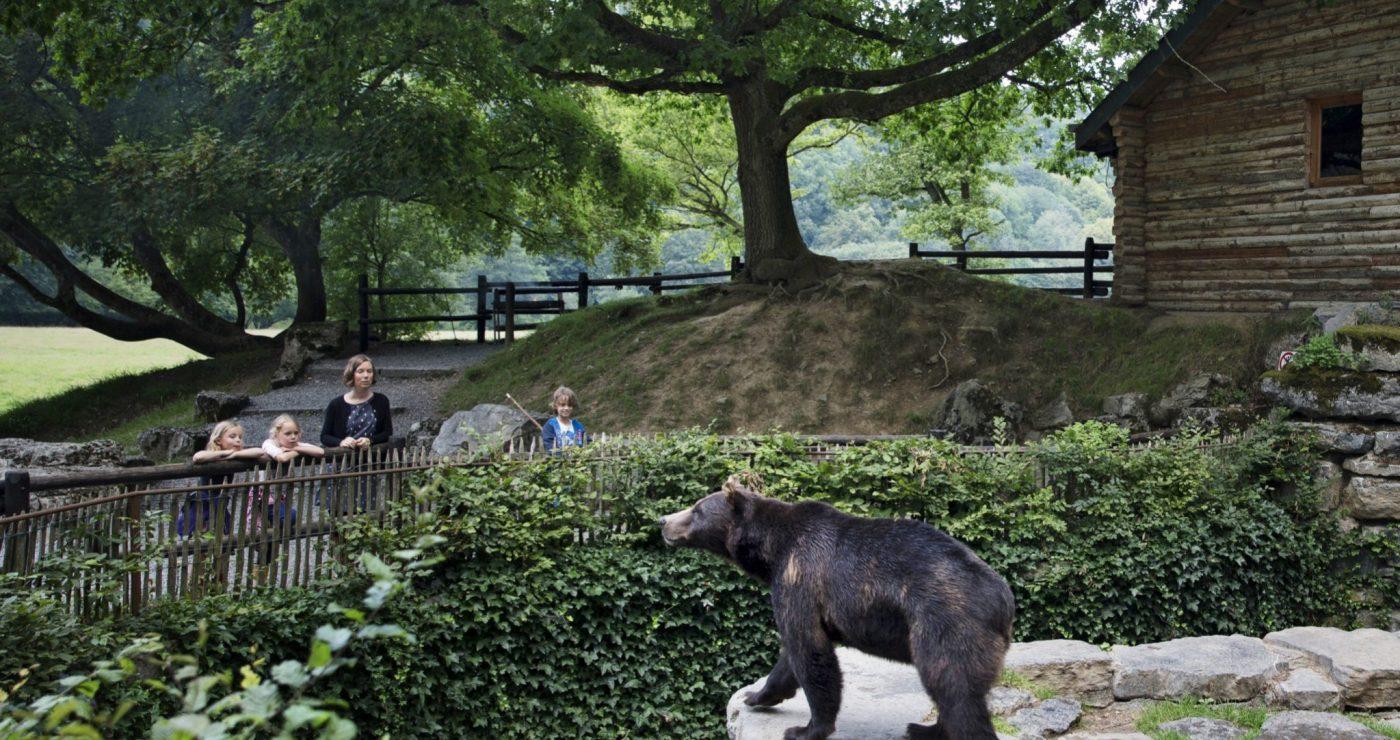 Origineel overnachten: Grotten van Han met kinderen