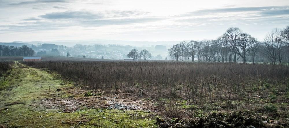 Herfstvakantie in de Ardennen_Wildpark Saint-Hubert