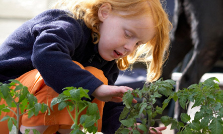 6 Ways to Teach Your Kids About Sustainable Living