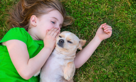 8 Secrets Your Dog Won't Tell You