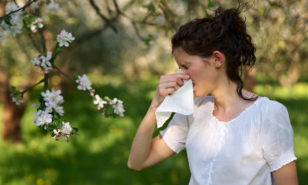 How to Make Your Home Allergy-Friendly (Infographic)