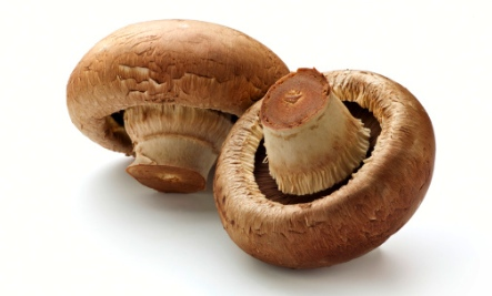 Foods for Immune Health: Mushrooms